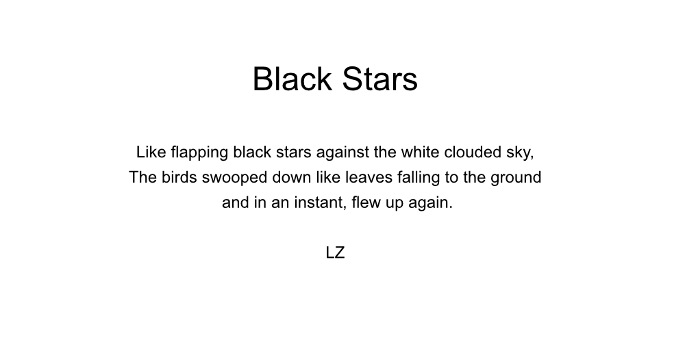 Black Stars - LZ