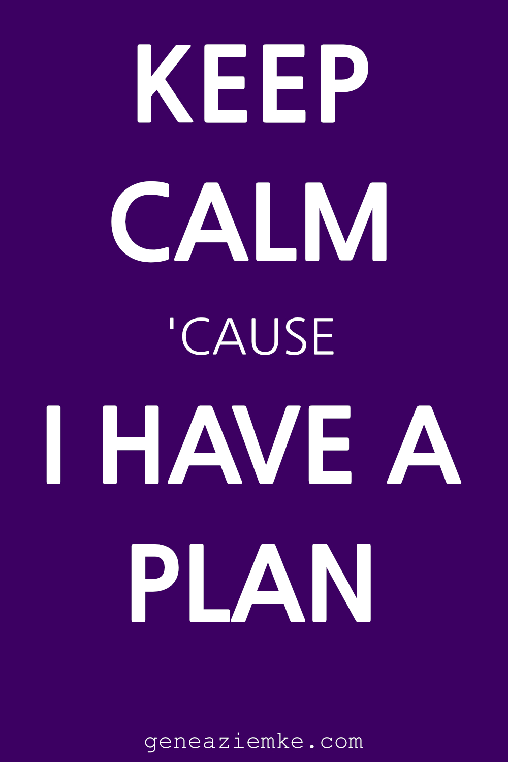 Keep Calm cause I Have A Plan