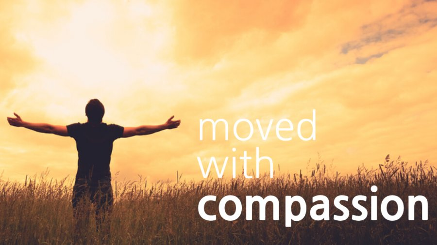 Moved With Compassion - Gene A. Ziemke - 10/6/1982